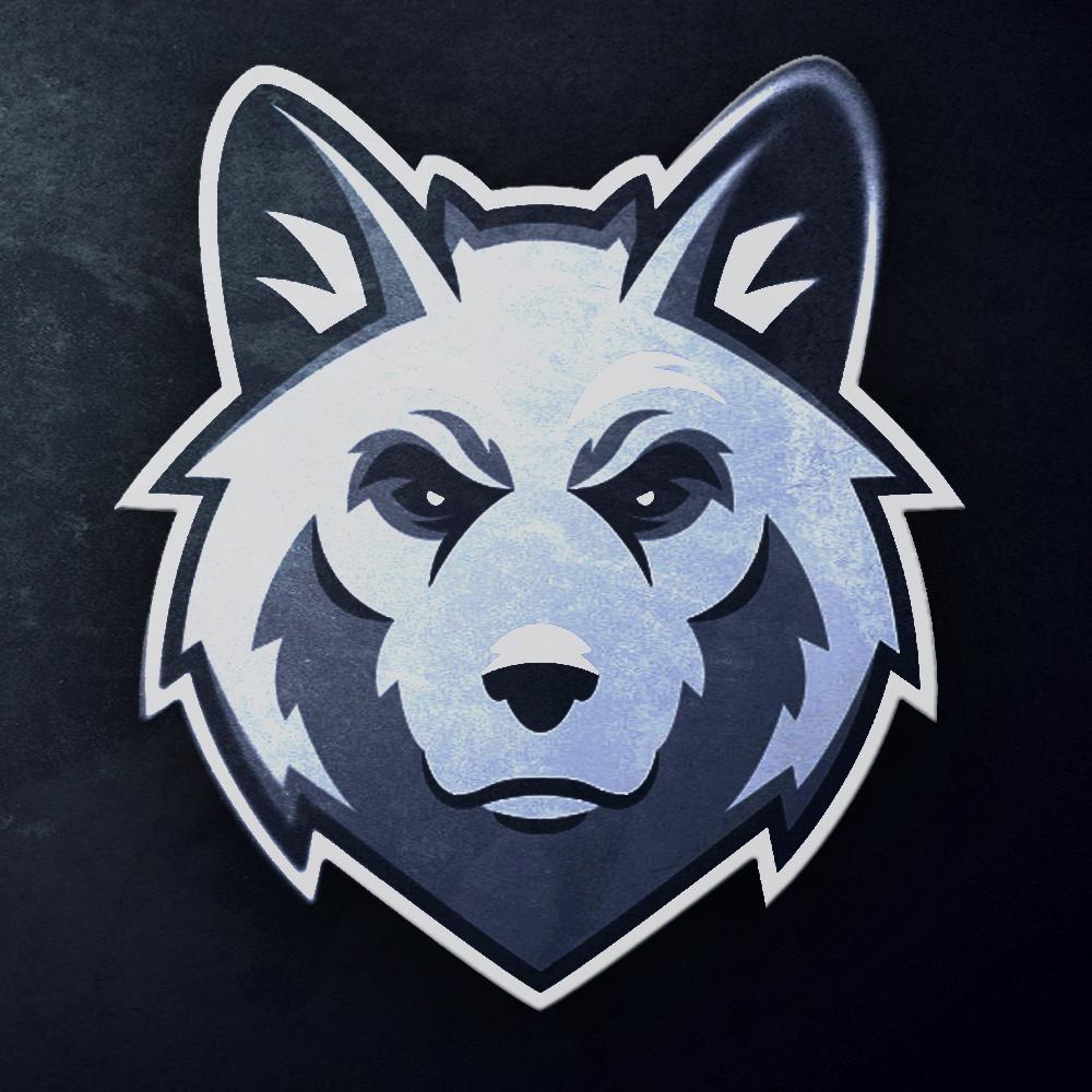 Play Teams Wolves Csgo