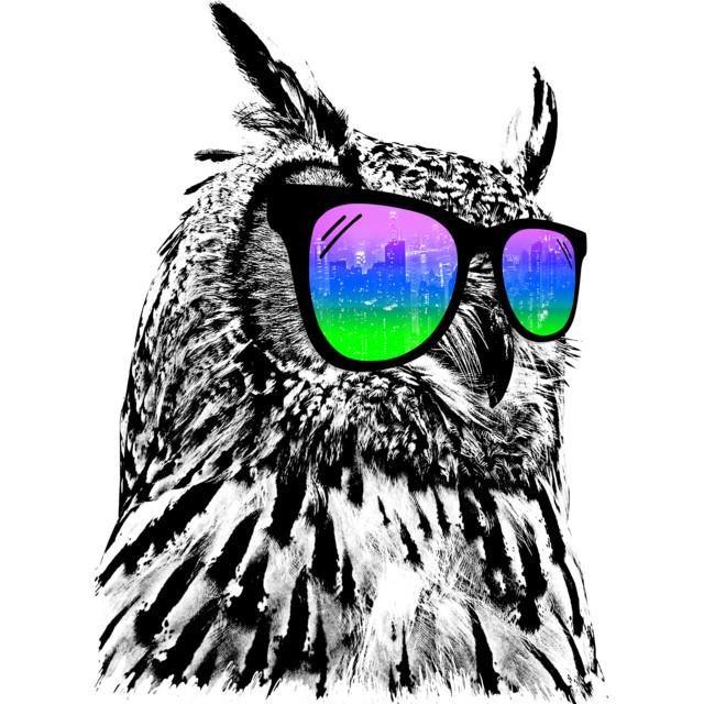 Play  Teams  Owls Were Cool